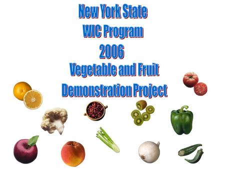 Project Overview In September 2005, The New York State Division of Nutrition identified state funds to provide WIC families with children the opportunity.