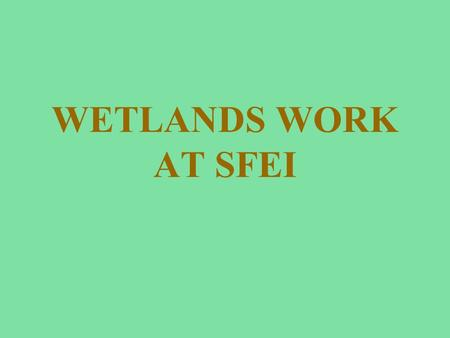 WETLANDS WORK AT SFEI. Basic Conceptual Model e.g., juvenile fish, organic carbon, contaminants, detritus e.g., salt, intertidal fishes, suspended sediment.