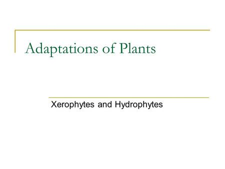 Adaptations of Plants Xerophytes and Hydrophytes.