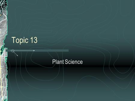 Topic 13 Plant Science.