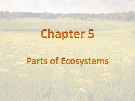 1. ecosystem- All of the living and nonliving things that interact in an area.