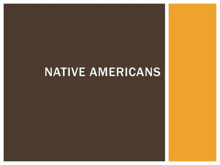 NATIVE AMERICANS.  Using your Native Americans Cultures notes from yesterday, make as many observations you can about Native Americans in general. 