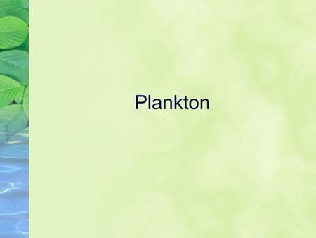 Plankton. Plankton Definition Plankton - Any drifting organisms which can be animals, plants, archaea, or bacteria, that live in the pelagic zone of oceans,