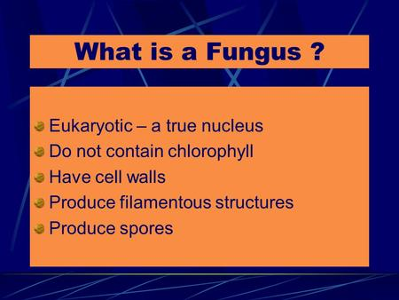 What is a Fungus ? Eukaryotic – a true nucleus Do not contain chlorophyll Have cell walls Produce filamentous structures Produce spores.