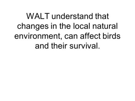 WALT understand that changes in the local natural environment, can affect birds and their survival.