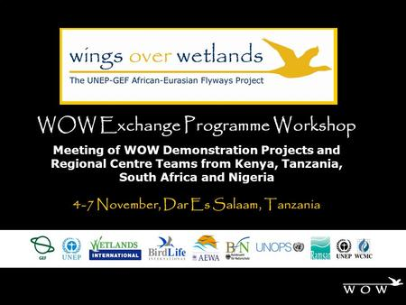 WOW Exchange Programme Workshop Meeting of WOW Demonstration Projects and Regional Centre Teams from Kenya, Tanzania, South Africa and Nigeria 4-7 November,