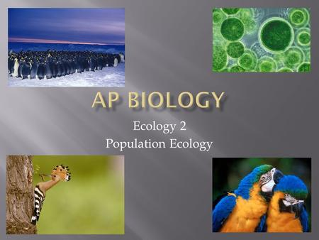 Ecology 2 Population Ecology.  A population is a group of individuals of a single species living in the same general area.  They rely on the same resources.