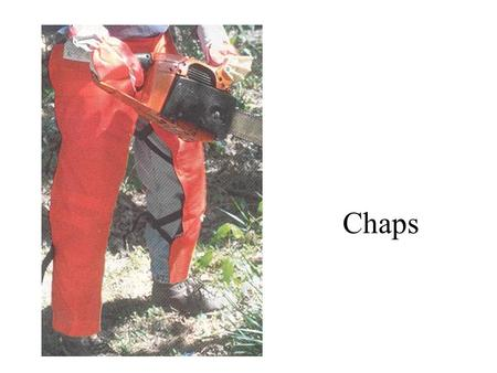 Chaps. Diameter tape Hand compass Increment borer.