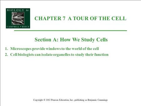 CHAPTER 7 A TOUR OF THE CELL Copyright © 2002 Pearson Education, Inc., publishing as Benjamin Cummings Section A: How We Study Cells 1.Microscopes provide.