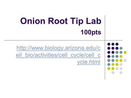 Onion Root Tip Lab 	100pts http://www.biology.arizona.edu/cell_bio/activities/cell_cycle/cell_cycle.html.
