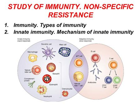STUDY OF IMMUNITY. NON-SPECIFIC RESISTANCE 1.Immunity. Types of immunity 2.Innate immunity. Mechanism of innate immunity.