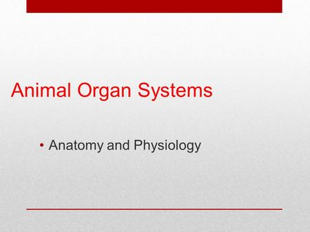Animal Organ Systems Anatomy and Physiology. Fundamentals of Life  All living things are made up of cells.  Cells are the most basic structure of life.