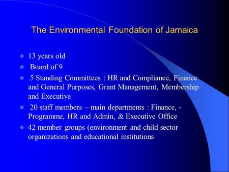 The Environmental Foundation of Jamaica 13 years old Board of 9 5 Standing Committees : HR and Compliance, Finance and General Purposes, Grant Management,