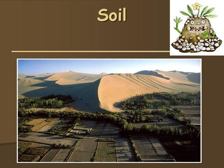 Soil. Soil  Formed by 1- weathering of rocks, 2- deposition of sediment, and 3- decomposition of organic material  Soil Composition  Minerals (45%)