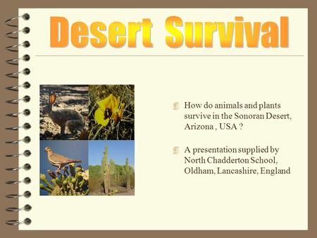 4 How do animals and plants survive in the Sonoran Desert, Arizona, USA ? 4 A presentation supplied by North Chadderton School, Oldham, Lancashire, England.