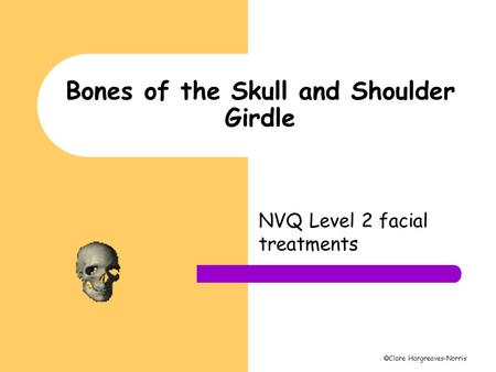 Bones of the Skull and Shoulder Girdle
