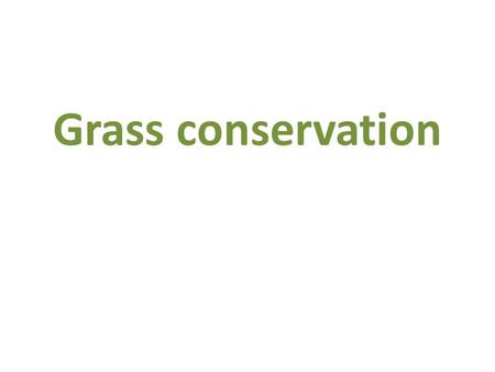 Grass conservation. Why do we need to conserve grass?