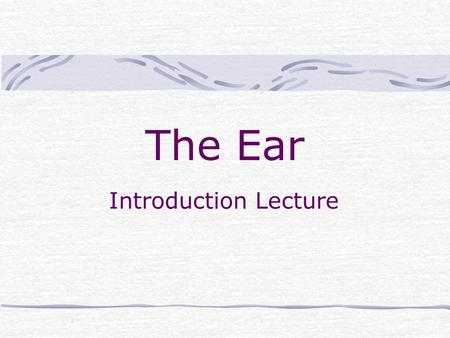 The Ear Introduction Lecture. Your Ears & Hearing Your ears are exceedingly well-designed organs with two roles -- they enable you to hear and to keep.