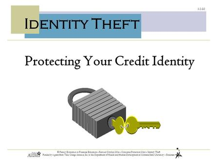 3.1.G1 © Family Economics & Financial Education – Revised October 2004 – Consumer Protection Unit – Identity Theft Funded by a grant from Take Charge America,