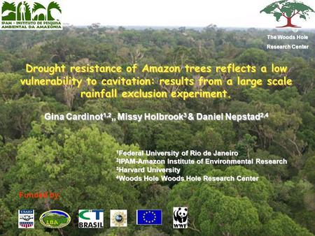 Drought resistance of Amazon trees reflects a low vulnerability to cavitation: results from a large scale rainfall exclusion experiment. Gina Cardinot.