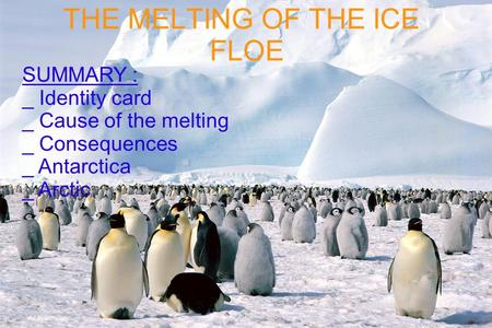 THE MELTING OF THE ICE FLOE SUMMARY : _ Identity card _ Cause of the melting _ Consequences _ Antarctica _ Arctic.