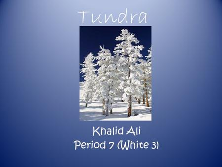 Tundra Khalid Ali Period 7 (White 3) Climate The yearly temperature range of the Tundra is -12°C to 34°C.