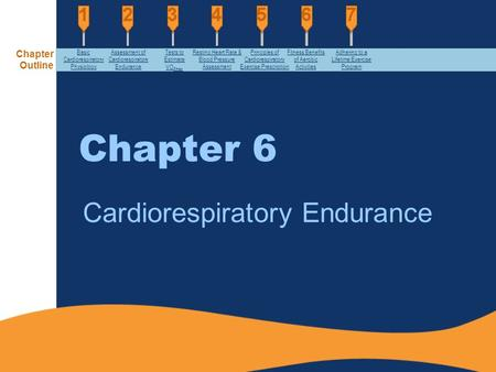 "an essay on the principles for cardiorespiratory endurance programming They are cardiovascular endurance, muscular strength, flexibility, body composition, and muscular endurance cardiovascular endurance is ""the ability of the circulatory and respiratory systems to supply oxygen during sustained physical activity"" (glossary)."
