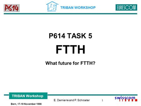E. Demierre and P. Schroeter 1 TRIBAN WORKSHOP TRIBAN Workshop Bern, 17-19 November 1998 P614 TASK 5 FTTH What future for FTTH?