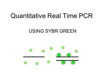 Quantitative Real Time PCR USING SYBR GREEN. SYBR Green SYBR Green is a cyanine dye that binds to double stranded DNA. When it is bound to D.S. DNA it.