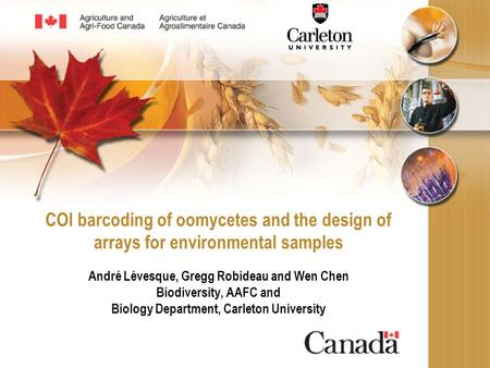 COI barcoding of oomycetes and the design of arrays for environmental samples André Lévesque, Gregg Robideau and Wen Chen Biodiversity, AAFC and Biology.