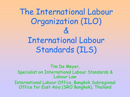 international labour standards On 10-12 of april, in vilnius, lithuania the training for the lawyers and leaders from baltic trade unions on international labour standarts and (.