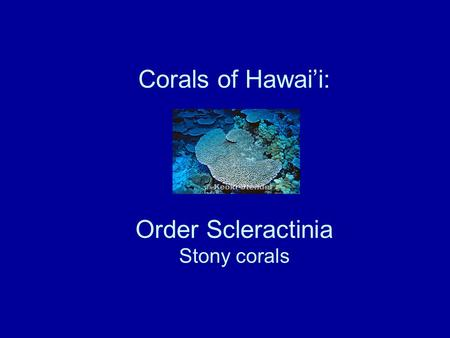 Corals of Hawai'i: Order Scleractinia Stony corals.