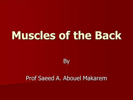 Muscles of the Back By Prof Saeed A. Abouel Makarem.