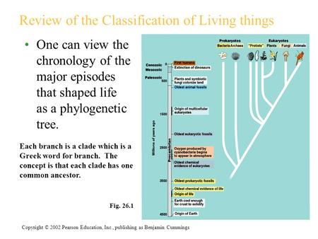 Review of the Classification of Living things One can view the chronology of the major episodes that shaped life as a phylogenetic tree. Fig. 26.1 Copyright.