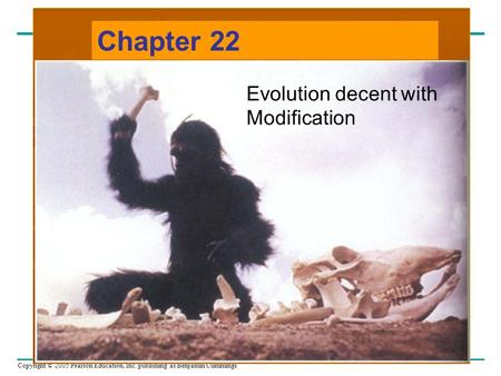 Copyright © 2005 Pearson Education, Inc. publishing as Benjamin Cummings Chapter 22 Evolution decent with Modification.