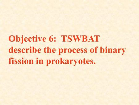 Objective 6: TSWBAT describe the process of binary fission in prokaryotes.