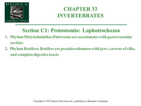 CHAPTER 33 INVERTEBRATES Section C1: Protostomia: Lophotrochozoa
