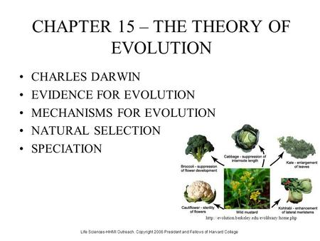 CHAPTER 15 – THE THEORY OF EVOLUTION CHARLES DARWIN EVIDENCE FOR EVOLUTION MECHANISMS FOR EVOLUTION NATURAL SELECTION SPECIATION Life Sciences-HHMI Outreach.