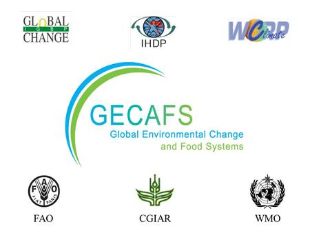 FAOCGIARWMO. A food-secure future for those most vulnerable to environmental stress. GECAFS Vision.
