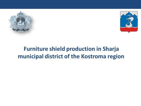 Furniture shield production in Sharja municipal district of the Kostroma region.
