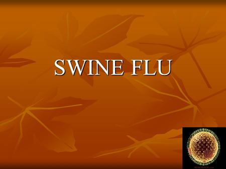 SWINE FLU. What is Swine Flu Swine influenza virus (referred to as SIV) refers to influenza cases that are caused by Orthomyxovirus endemic to pig populations.