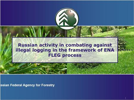 1 Russian activity in combating against illegal logging in the framework of ENA FLEG process Russian Federal Agency for Forestry.