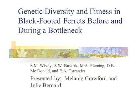 Genetic Diversity and Fitness in Black-Footed Ferrets Before and During a Bottleneck S.M. Wisely, S.W. Buskirk, M.A. Fleming, D.B. Mc Donald, and E.A.