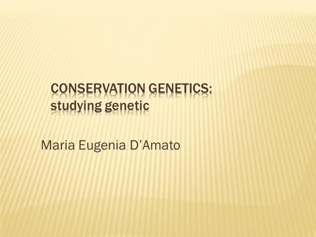 Maria Eugenia D'Amato. Molecular genetics techniques Types and properties of molecular makers Factors that determine the patterns of genetic variation.