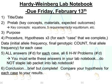 Hardy-Weinberg Lab Notebook -Due Friday, February 13 th 1)Title/Date 2)Prelab (key concepts, materials, expected outcomes)  Key concepts: equations, 5.