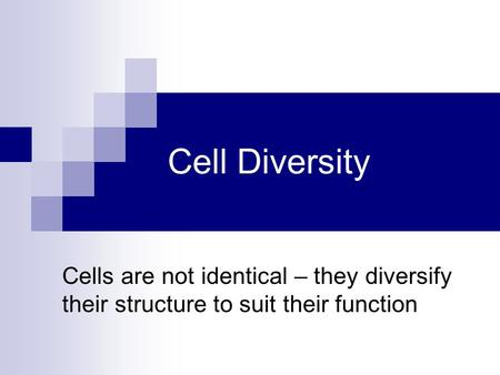 Cell Diversity Cells are not identical – they diversify their structure to suit their function.