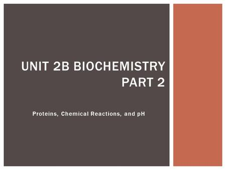 Proteins, Chemical Reactions, and pH UNIT 2B BIOCHEMISTRY PART 2.