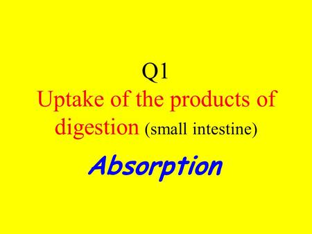 Q1 Uptake of the products of digestion (small intestine) Absorption.