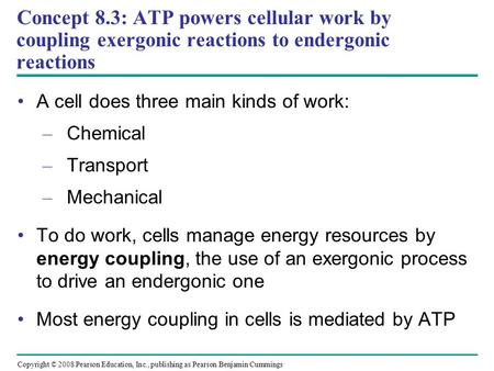 A cell does three main kinds of work: Chemical Transport Mechanical