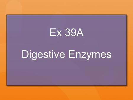 Ex 39A Digestive Enzymes. Energy Transfer in Chemical Reactions Forming new bonds can either release or absorb energy Chemical reactions usually involve.
